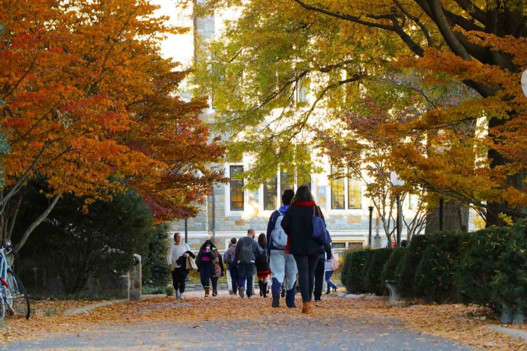 Students walking down Copley Lawn